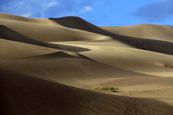 L'ombre et la lumière jouent avec les superbes courbes des dunes Great Sand Dunes Colorado
