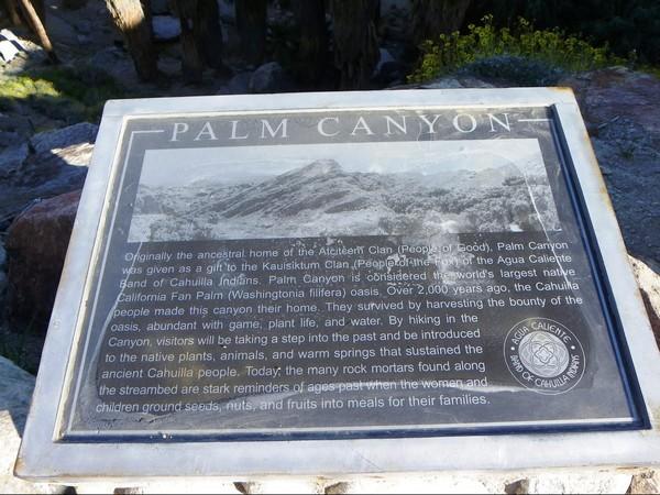 Palm Canyon Indian Canyons
