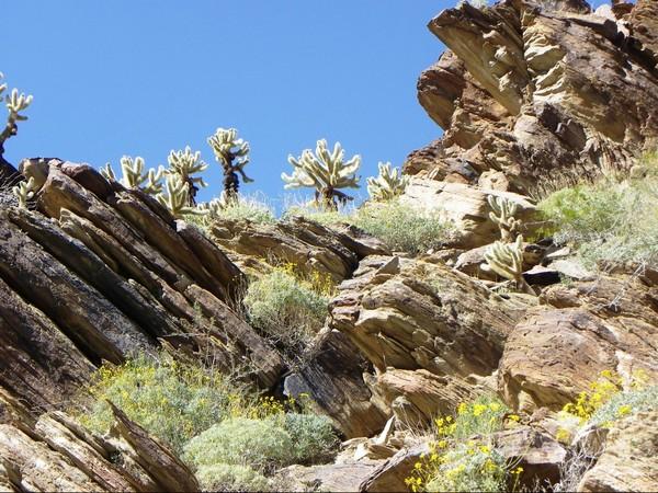Murray Canyon