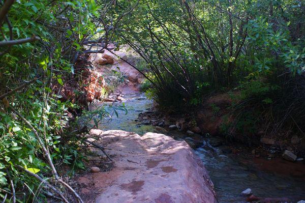 Ruisseau sur le chemin vers Kanarra Creek Utah
