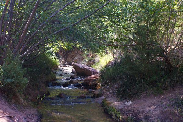 Vers le canyon de Kanarra Creek Utah