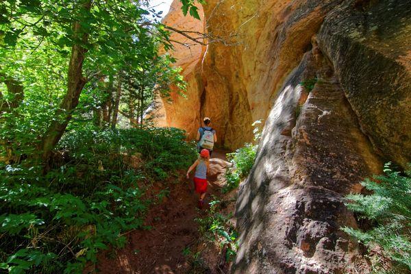A l'approche du canyon de Kanarra Creek Utah