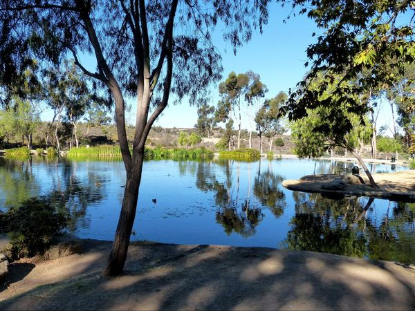 Lac du parc Kenneth Hahn Los Angeles