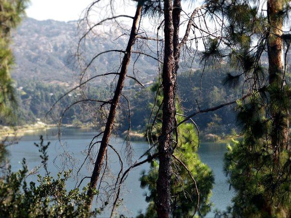 Lake Hollywood Trail