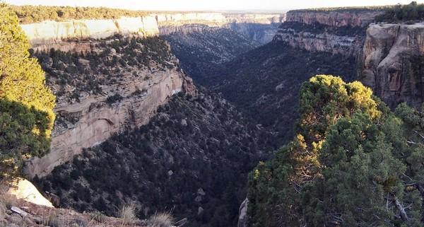 Vue sur le Cliff Canyon depuis Sun Temple Mesa Verde