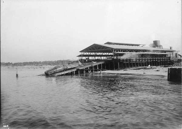 Moss Landing Whaling Station 1919