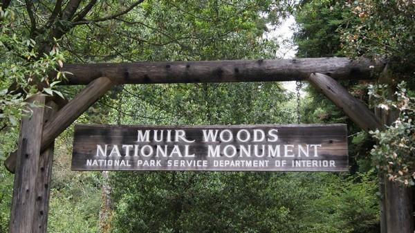 Entrée Muir Woods National Monument