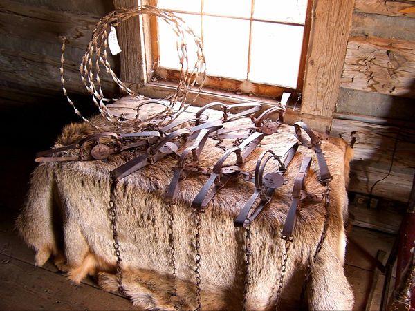 Buffalo Hunter's Cabin Old Trail Town Wyoming