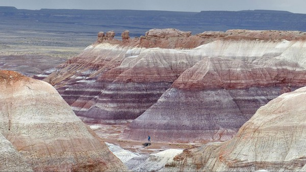 Blue Mesa Petrified Forest National Park Arizona