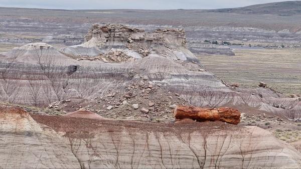 Formations géologiques de Petrified Forest & Painted Desert National Park Arizona