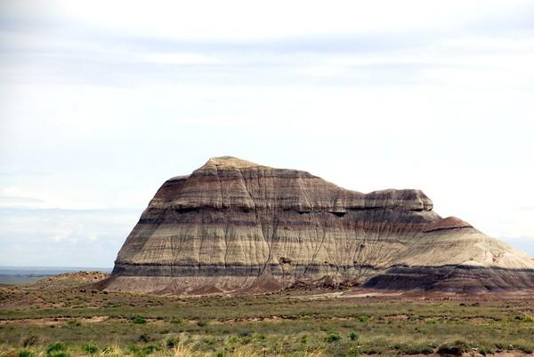 En direction de Crystal Forest Petrified Forest National Park Arizona