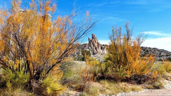 Couleurs d'automne Plaza Blanca Nouveau-Mexique