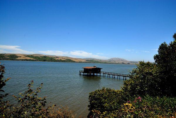 Martinelli Park Point Reyes