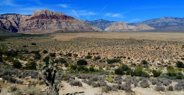 Red Rock Overlook