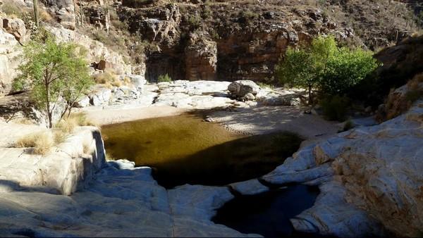 Sabino Canyon Arizona