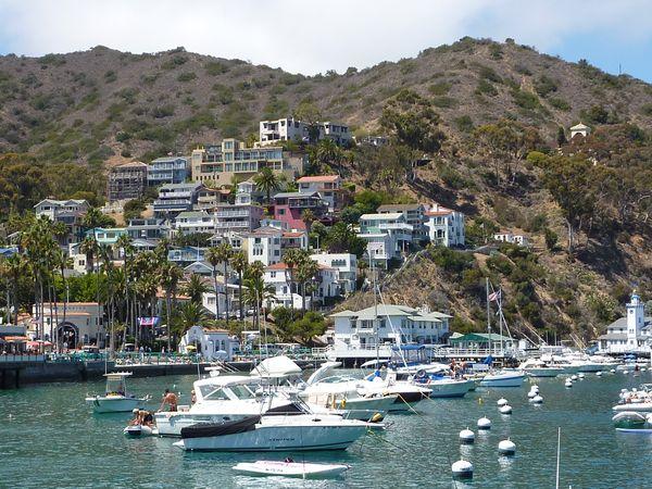 La baie d'Avalon Santa Catalina Island