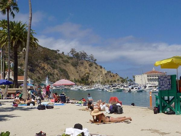 Plage Avalon Santa Catalina Island Californie
