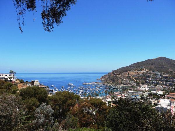 Vue depuis la Scenic Drive Santa Catalina Island