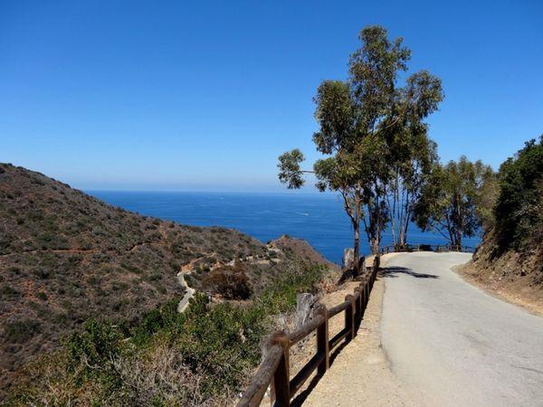 Sur la Scenic Drive Santa Catalina Island Californie