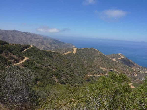 Territoire protégé de Santa Catalina Island Californie