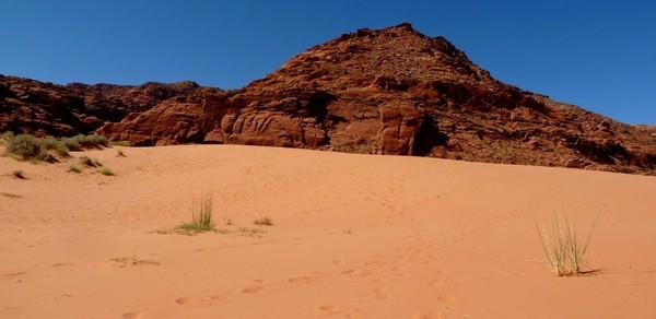 Sand Dunes Trail Utah