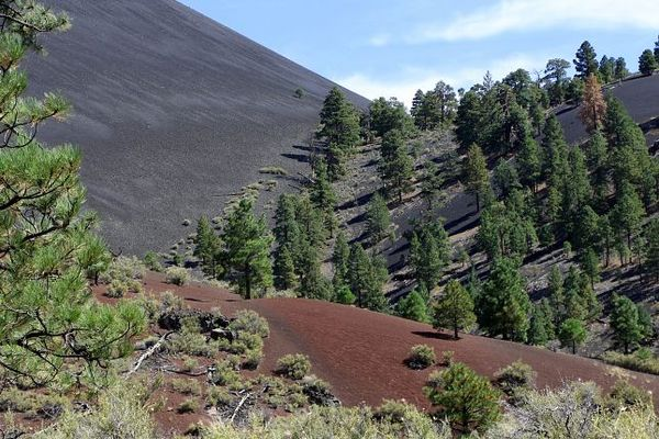 Painted Desert Vista Sunset Crater Volcano Arizona