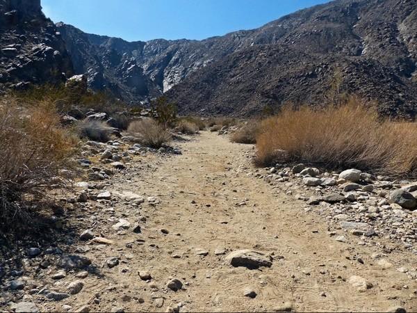 Départ du sentier Tahquitz Canyon
