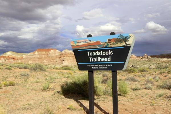Panneau Toadstools Trailhead