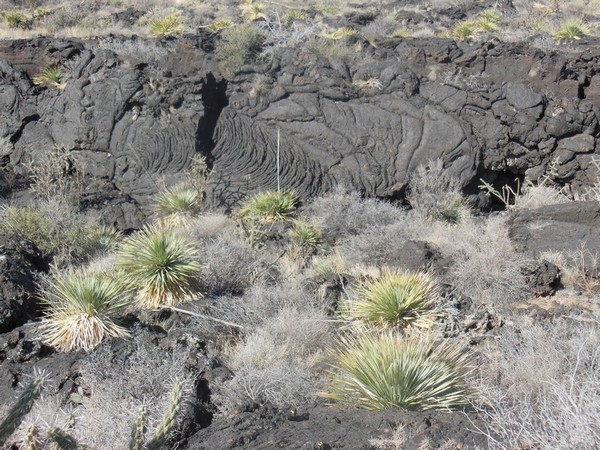 Pahoehoe lave
