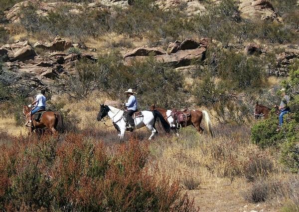 Balade à cheval Vasquez Rocks