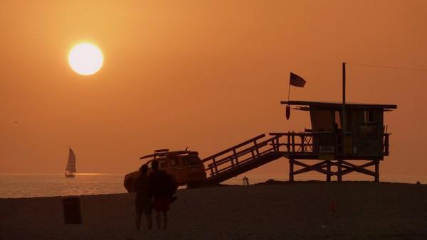 Venice City Beach