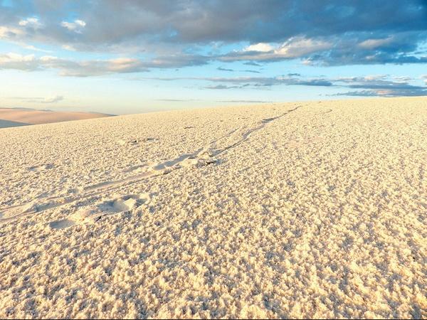 Sable de White Sands