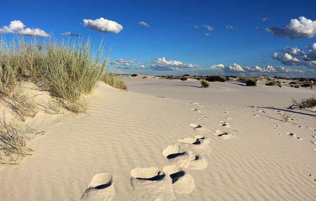 Au cœur des dunes