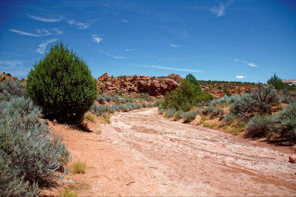 Trail menant à Wire Pass Utah USA
