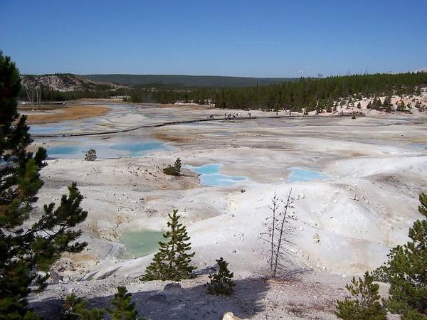 Norris Yellowstone