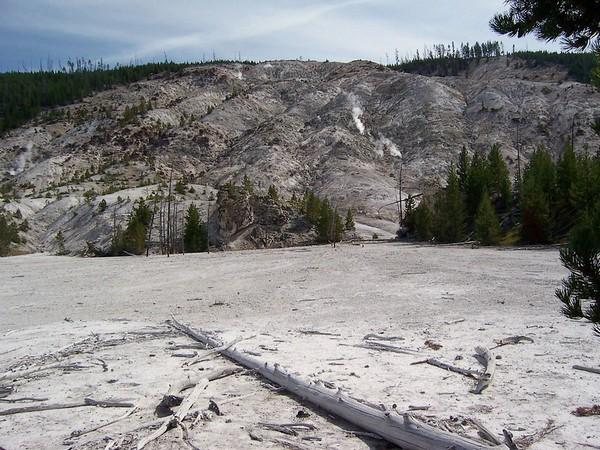 Roaring Mountain Yellowstone