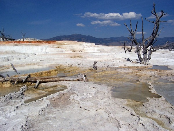Mammoth Hot Springs - Lower Terraces Yellowstone