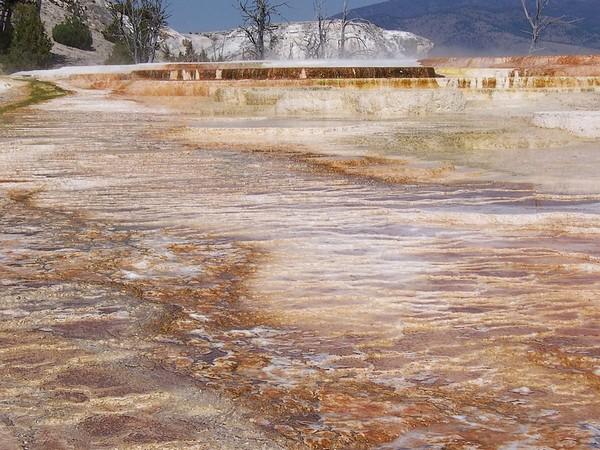Main Terrace Yellowstone