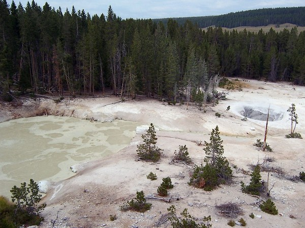 Sulfur Caldron Yellowstone