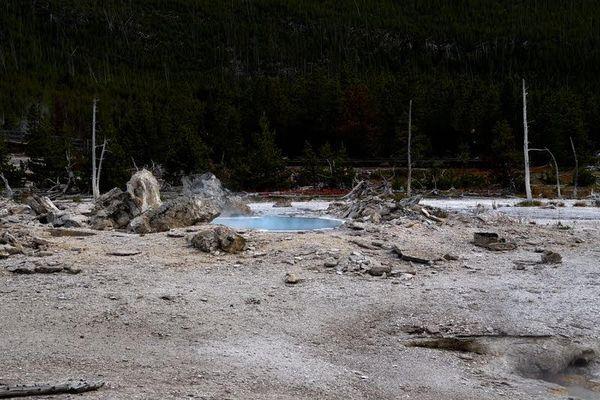 Porckchop Geyser Yellowstone