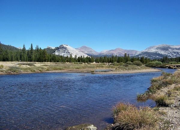 Le long de la Tioga Pass Road Yosemite