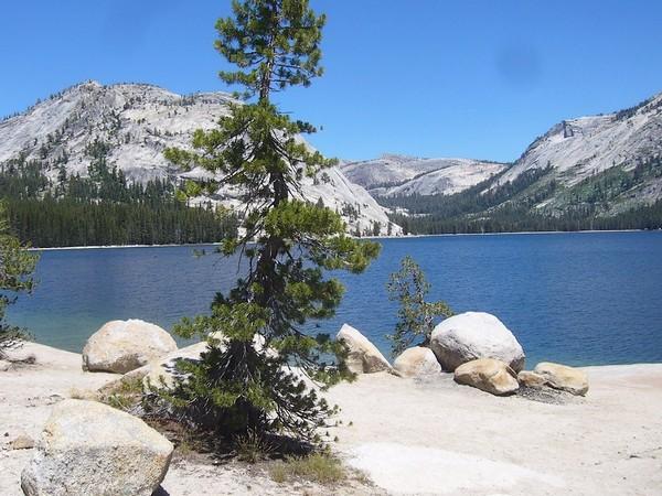 Tenaya Lake Yosemite Park