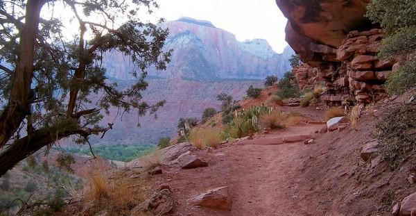 Watchman Trail Zion NP