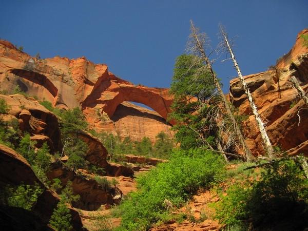 Kolob Arch Zion NP