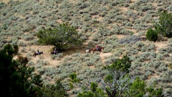 Sand Bench Trail à cheval Zion NP