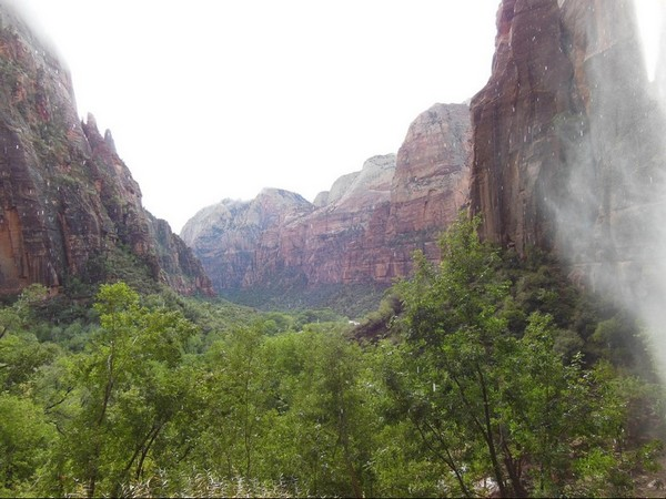Weeping Rock Zion NP