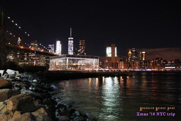 Jane's Carousel de nuit Brooklyn New York