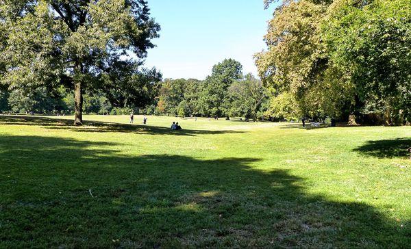 Long Meadow Prospect Park New York