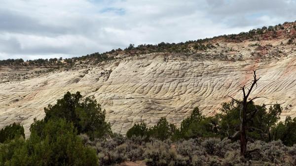 Deer Creek Burr Trail Road Utah