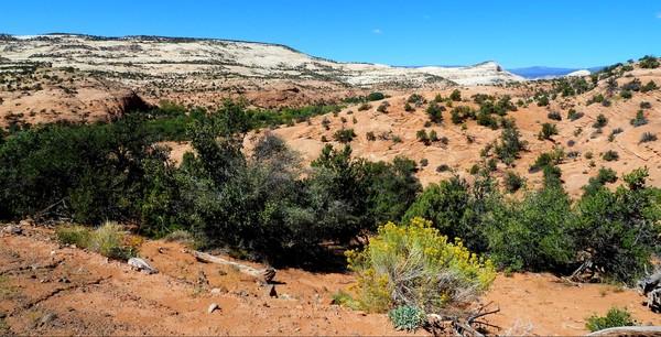 Lower Gulch Trail Utah